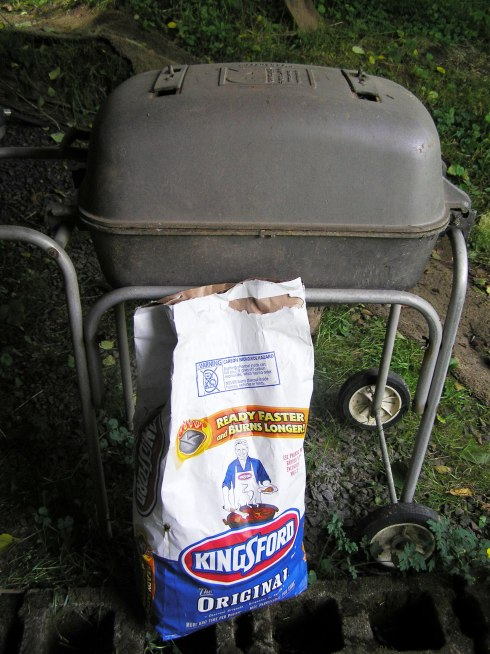 Our Trusty Charcoal Grill