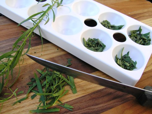 Filling Tray with Tarragon