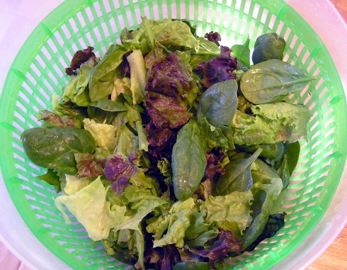 Fresh Red Leaf Lettuce and Baby Spinach
