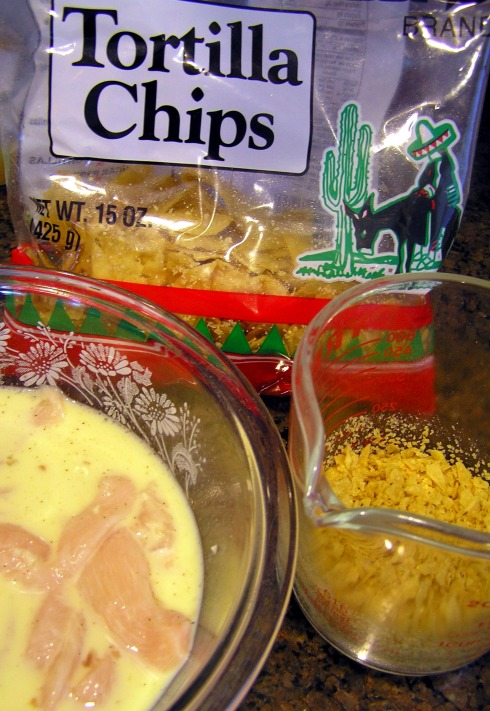Tortilla Chips and Marinating Chicken