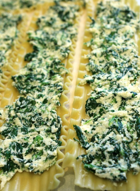 Spinach Cheese Mixture Spread on Lasagna Noodles