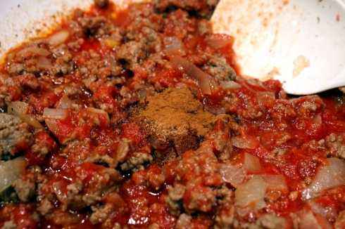 Beef and Tomato Sauce Mixture