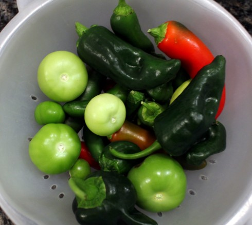 Pepper and Tomatillo Harvest